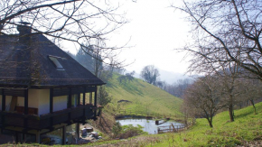 Cottage for 4 Persons in Bollschweil