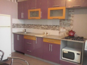 Two-Bedroom Apartment on Kozlova 27