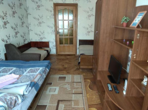 Apartment On Gagarina 17
