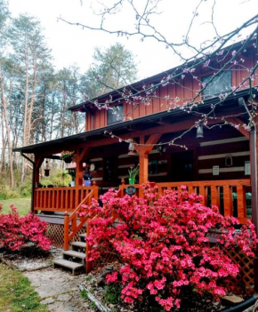 Smokies Cozy Country Cabin